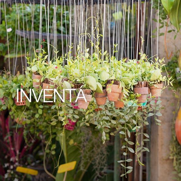 Jard n colgante creado a partir de un colch n for Revista jardin genios 2016