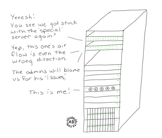 The 'special' server