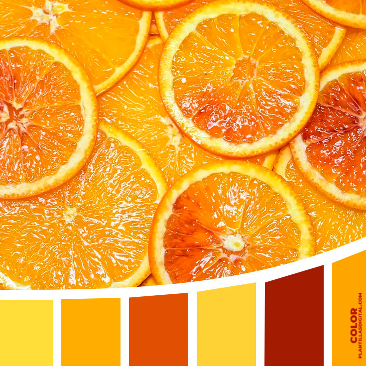 color_323