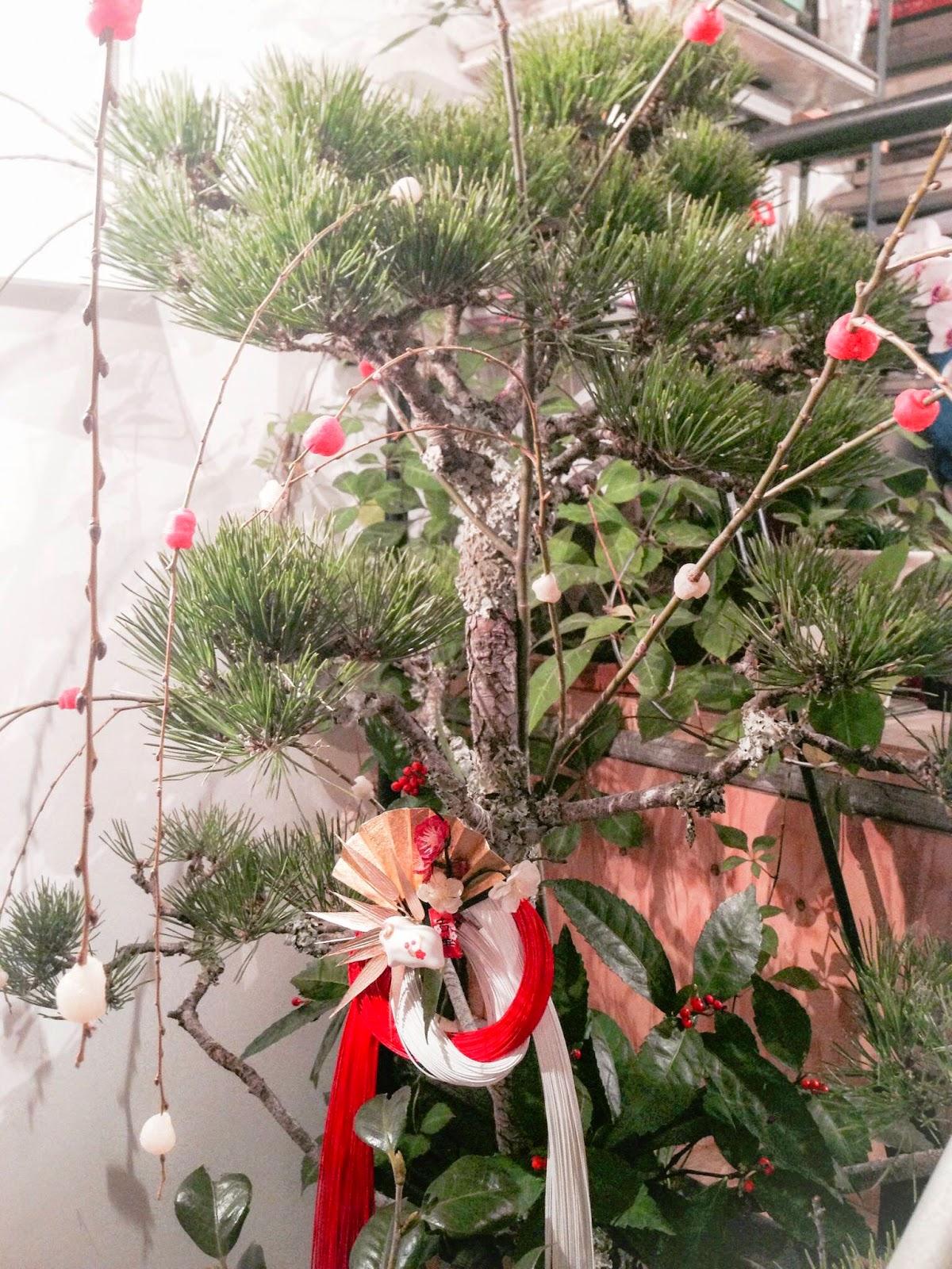 お正月の松