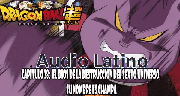 Ver capitulo 28 en audio latino online, Después un par de semanas, Goku y Vegeta vuelven al planeta del Sr Bills para continuar entrenando.