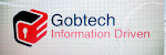 GobTech (Information Driven)