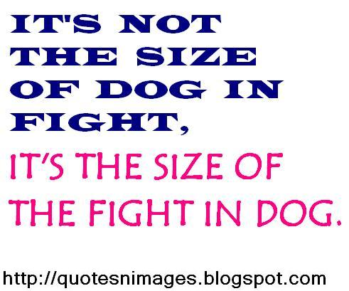 Quotes And Sayings Quotes About Fight