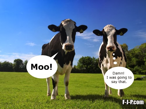 Moo!  Damn, I was going to say that!