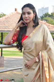 Angana Roy in Silk Saree at Teaching Tree Carnival .xyz 002.JPG