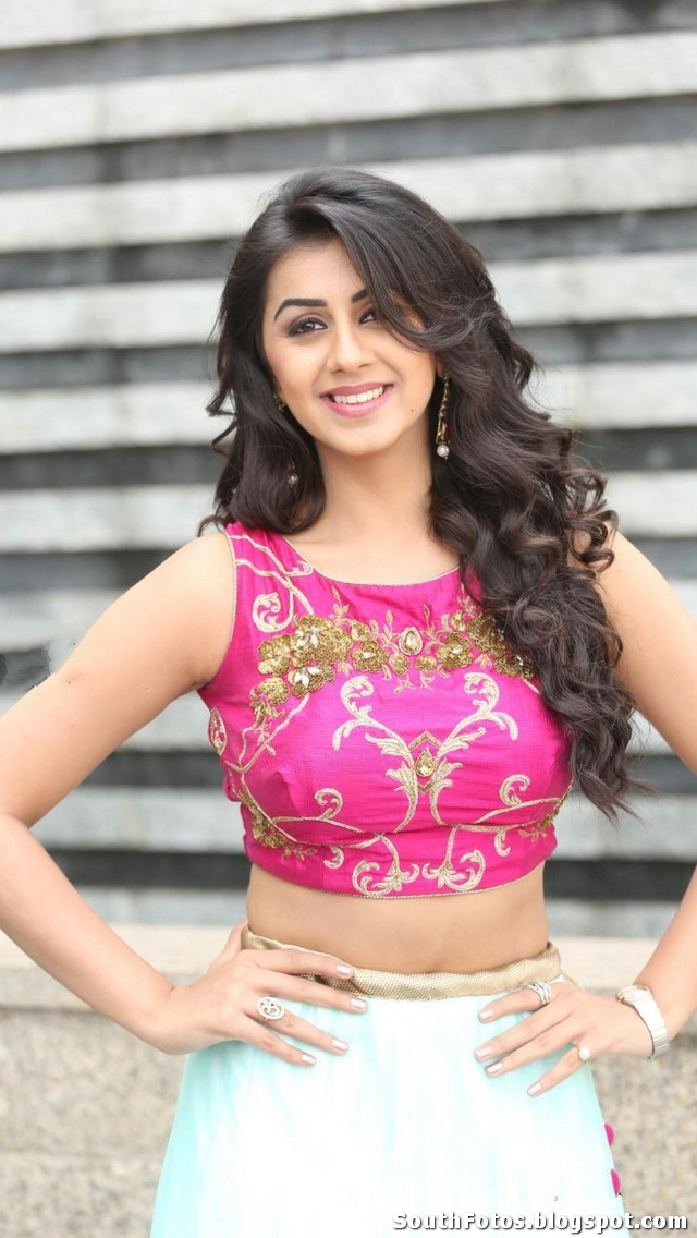Nikki Galrani Sexy Photo Gallery