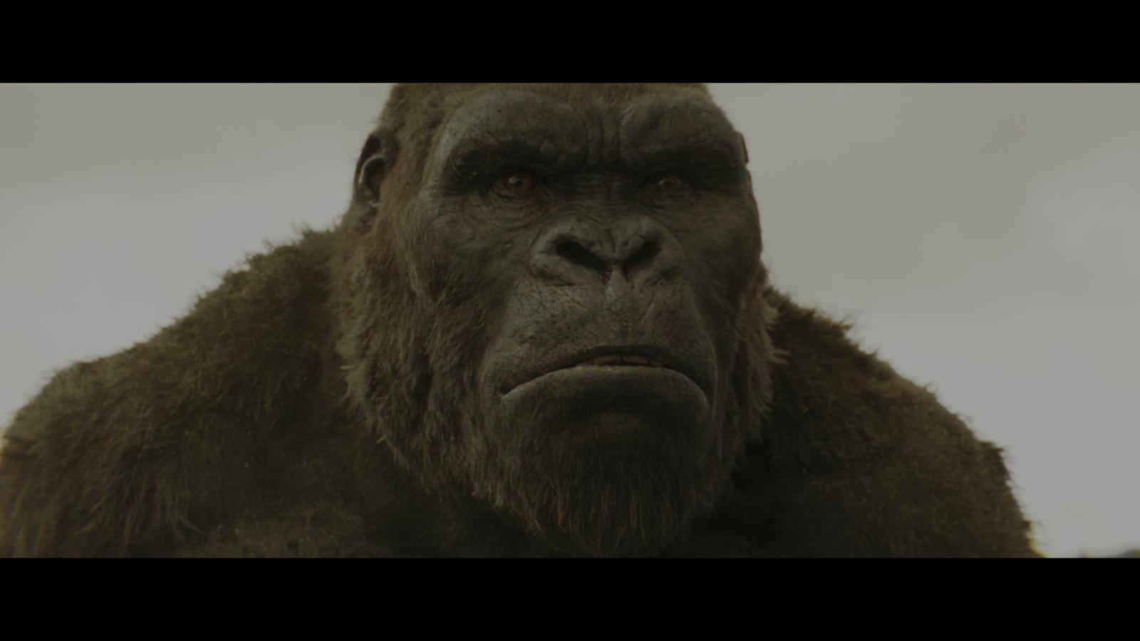 Kong: La isla Calavera (2017) 4K UHD Blu-Ray Completo captura 1