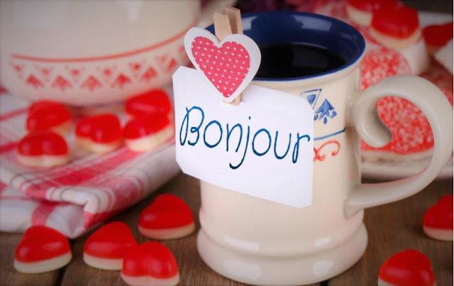 Mon amour, Bonjour !