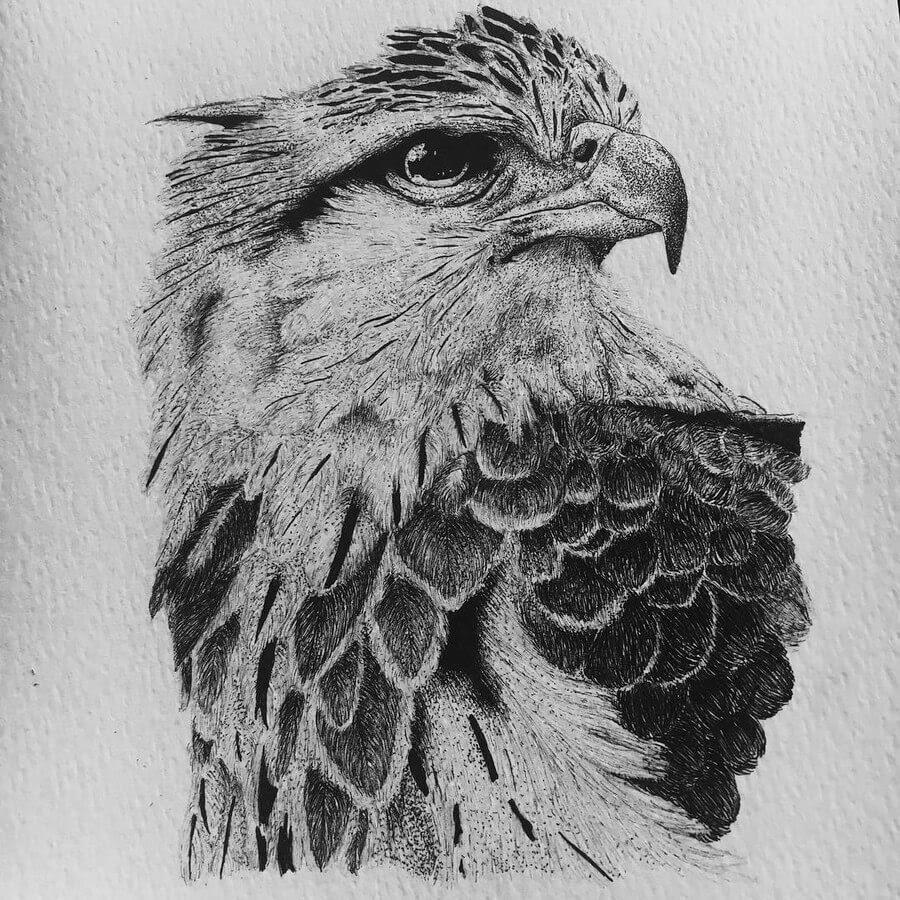 01-Eagle-Paige-Bates-www-designstack-co