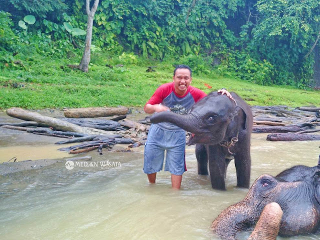 Memandikan Gajah (Elephant Washing)