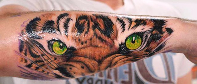 Eye Of The Tiger Tattoo Tattos For Men