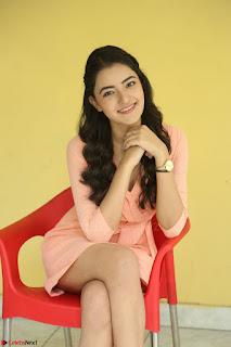 Rukshar Mir in a Peachy Deep Neck Short Dress 095.JPG
