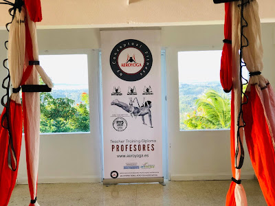 aerial pilates, aerial yoga, aeropilates, aeroyoga, air yoga, bienestar, ejercicio, formacion, puerto rico, sport, teacher training, us, usa, wellness, yoga aerea, yoga aereo, yoga alliance