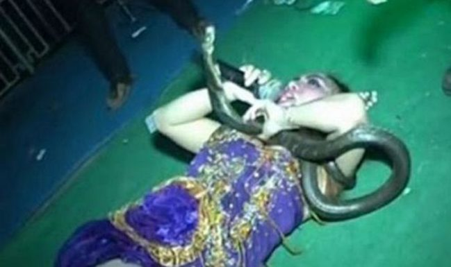 This Woman Bravely Chose To Continue Performing Even After A Venomous Cobra Bit Her!