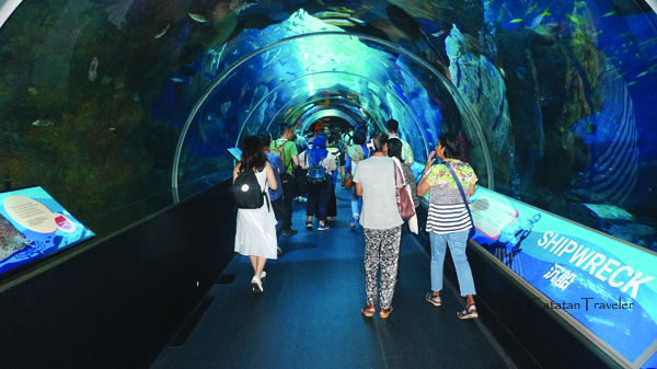 Singapura, SEA marine aquarium,
