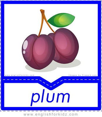 Plum - English flashcards for the fruits, vegetables and berries topic