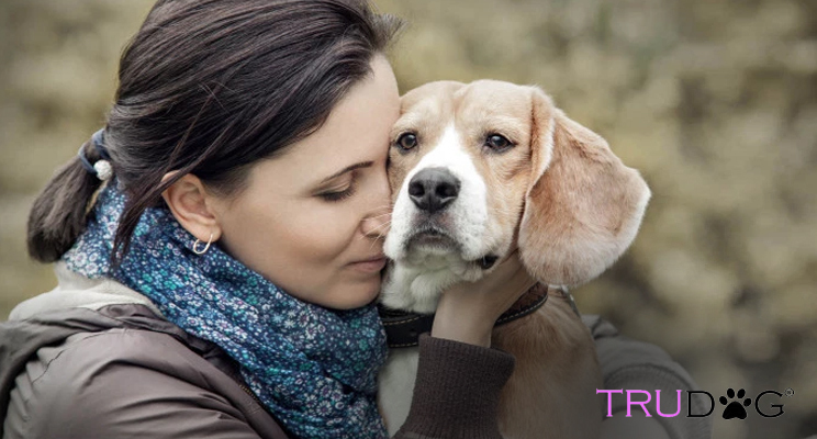 New Studies Show Humans Love Dogs More Than Other Humans