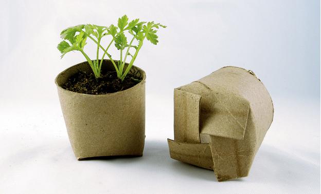 Artesanato com rolos de papel higiênico
