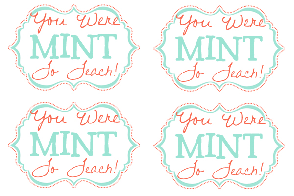 Mint Can T Find My Home