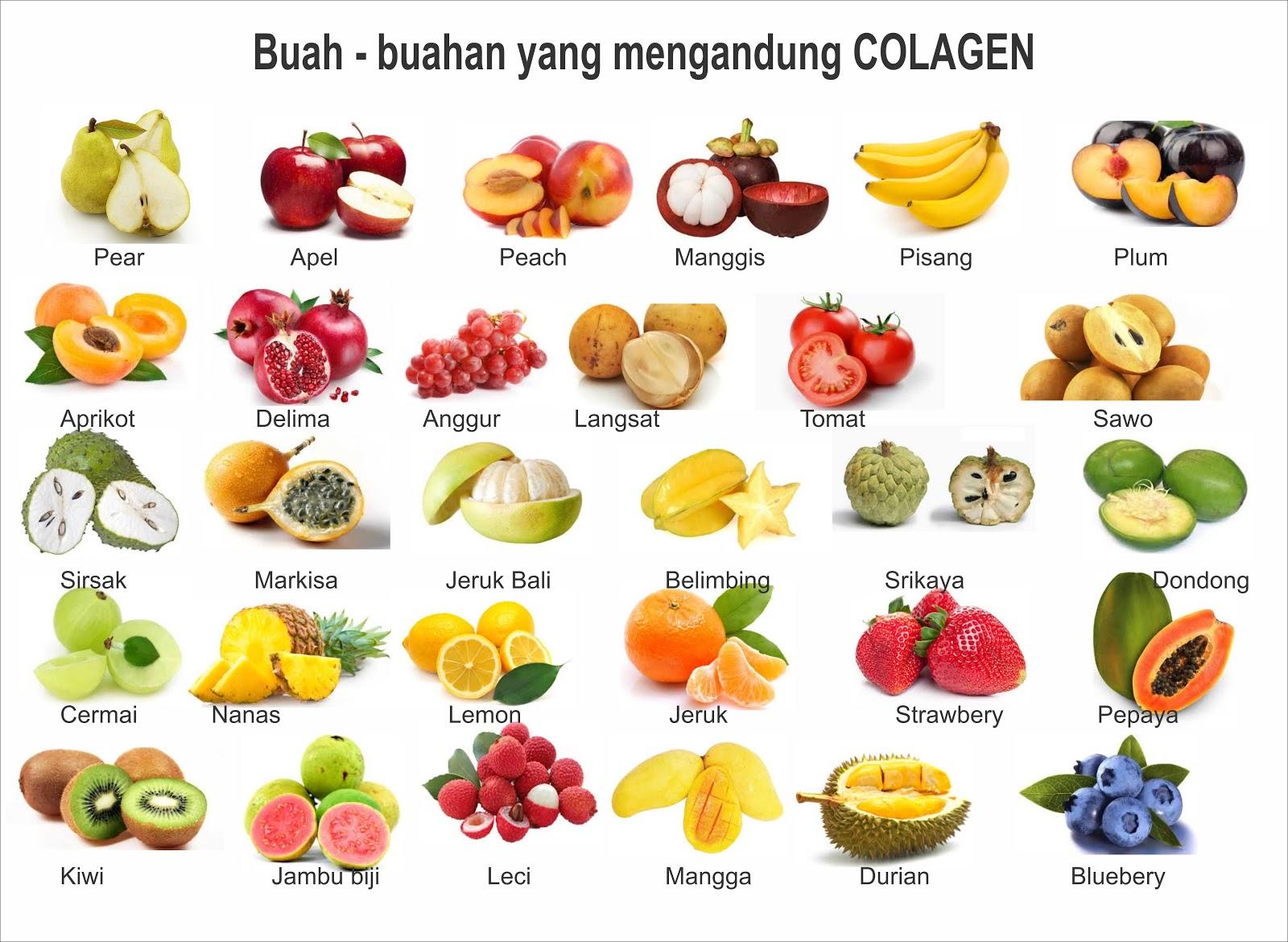 Makanan Ber Alkali