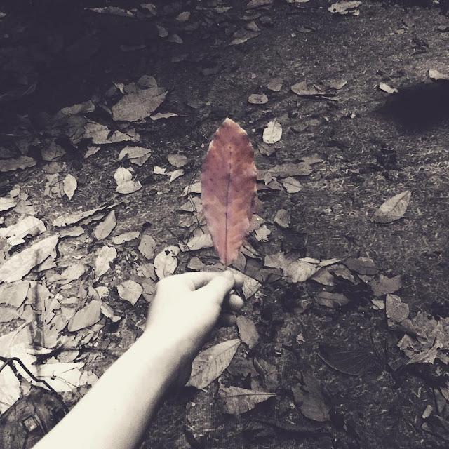 Stt im lặng, Status về sự im lặng trong tình yêu là cách tốt nhất