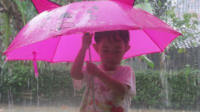 Berguru Pada Hujan