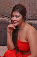 Payal Ghosh Looks Stunning in Red Half Shoulder Gown 037.JPG