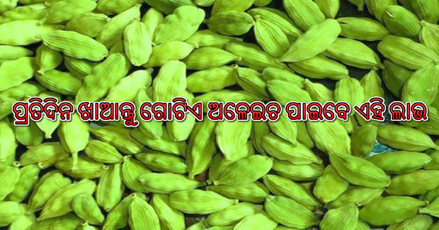 Benefits of eating a cardamom (Elaichi) daily