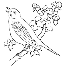 Pet Images Canary Bird Coloring Sheet For Kids