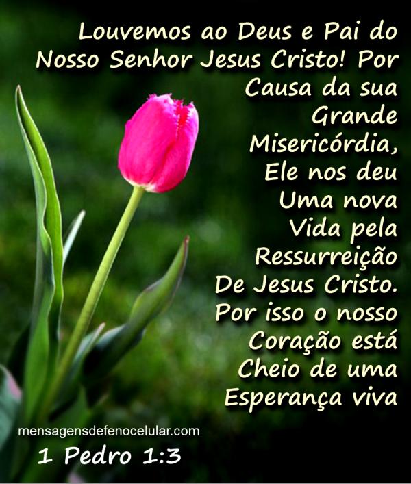 Mensagens De Fé Da Palavra De Deus: Mensagem De Esperança