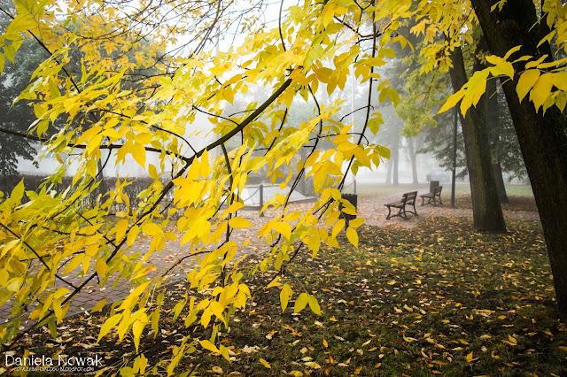 Jesień w Pyskowicach