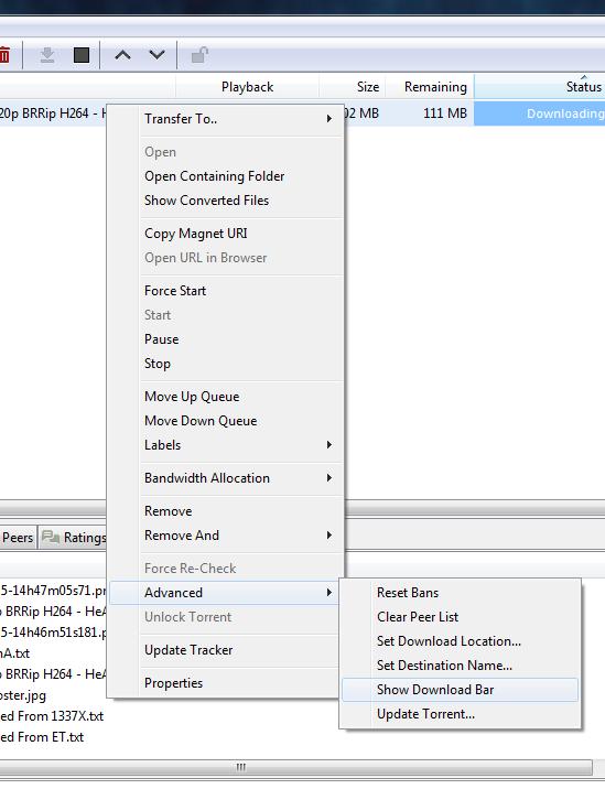 torrent download bar settings