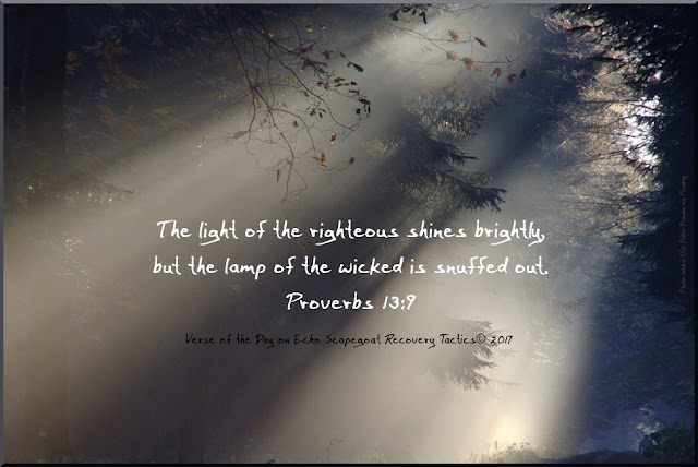 Verse of the Day by Kelly Christensen - Echo Scapegoat Recovery Tactics© for July 12, 2017.   The light of the righteous shines brightly, but the lamp of the wicked is snuffed out. Proverbs 13:9. Created