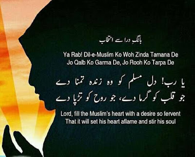 poetry of allama iqbal