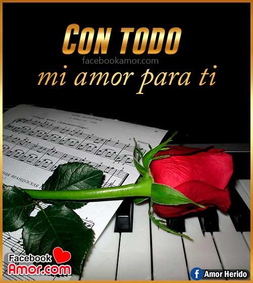 rosa roja de amor