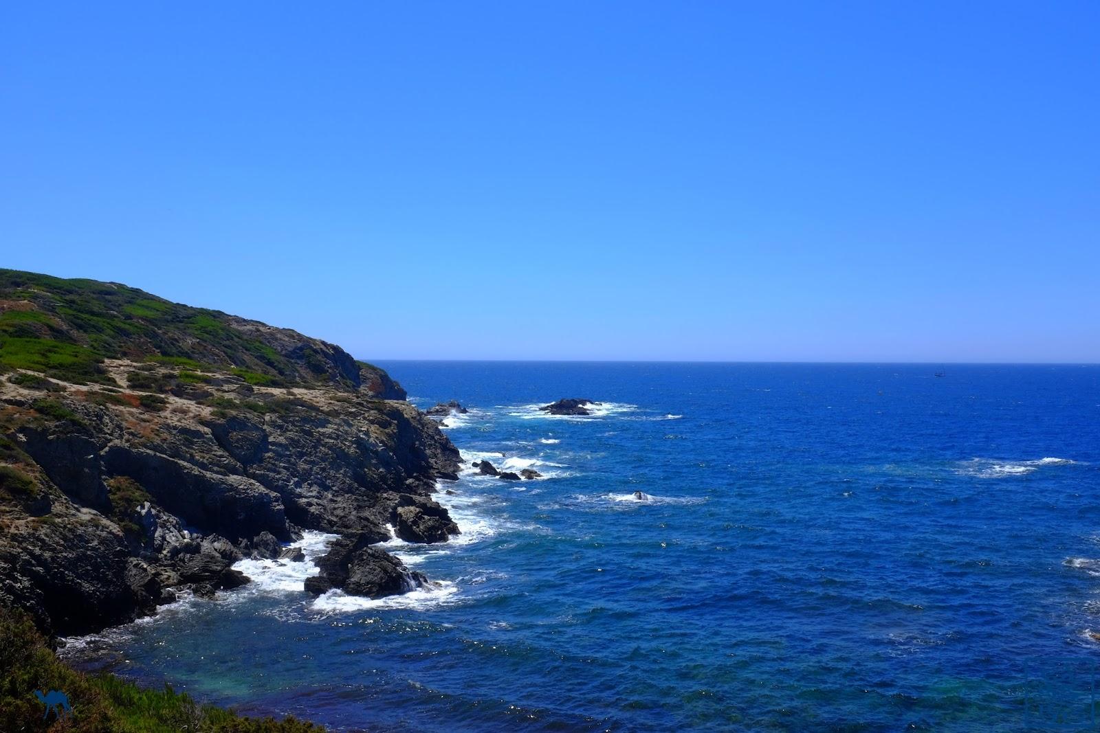 Le Chameau Bleu - Falaises  de l'ile des Embiez - Var  - Séjour en Méditerranée