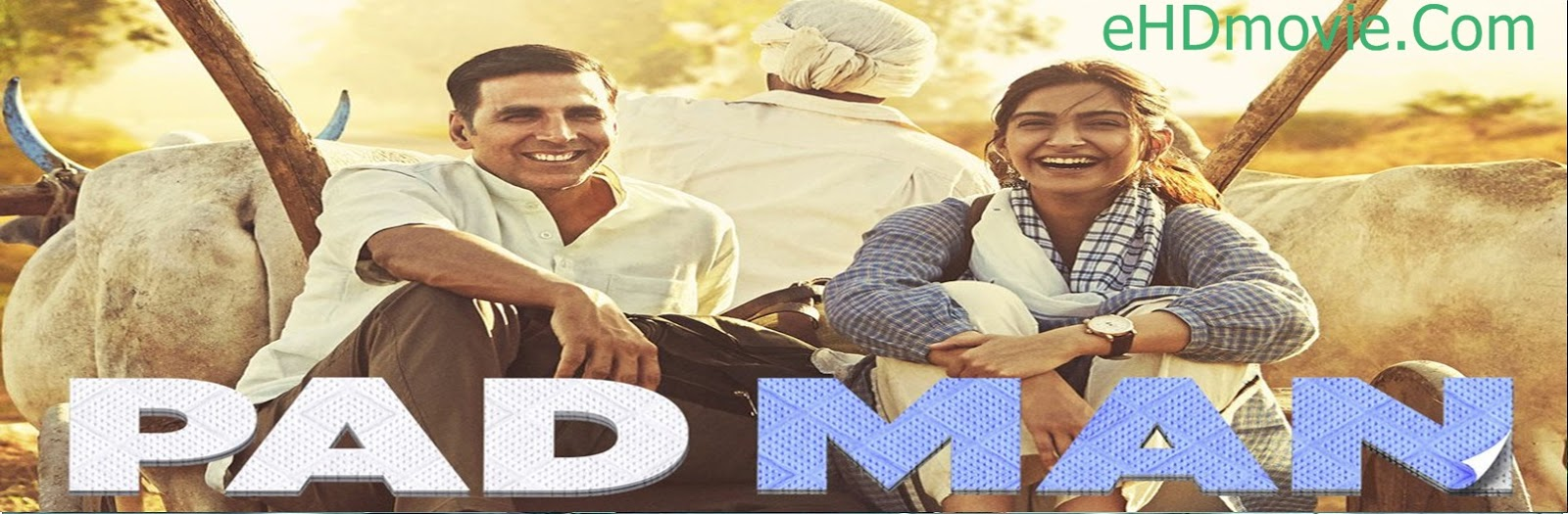 Padman 2018 Full Movie Hindi 720p - HEVC - 480p ORG BRRip 400MB - 650MB - 1.4GB ESubs Free Download