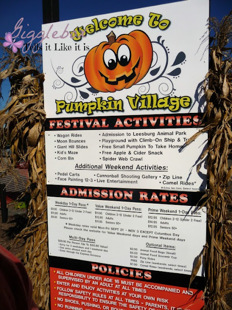 Fall time family fun at Pumpkin Village at Leesburg Animal Park in Leesburg VA, family fun in Northern Virginia,