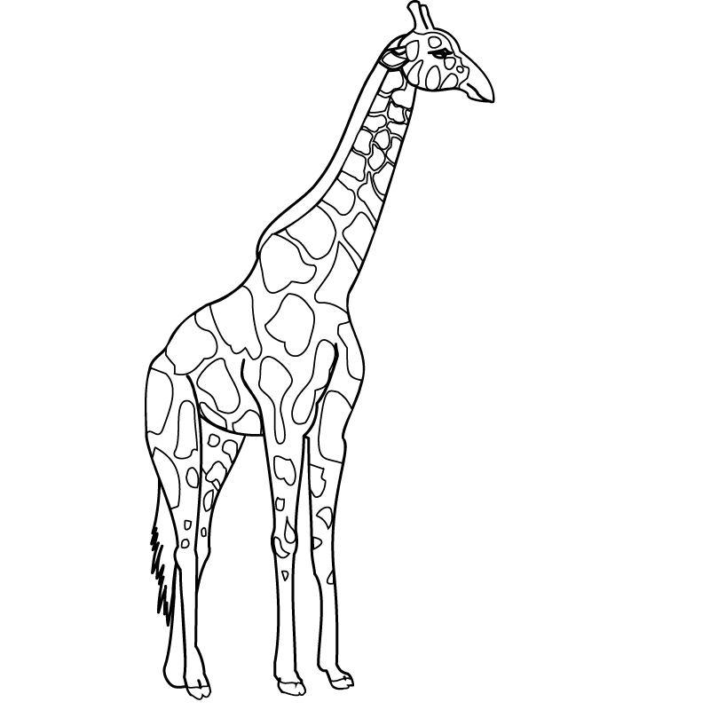 baby giraffe coloring pages printable kids colouring pages ...