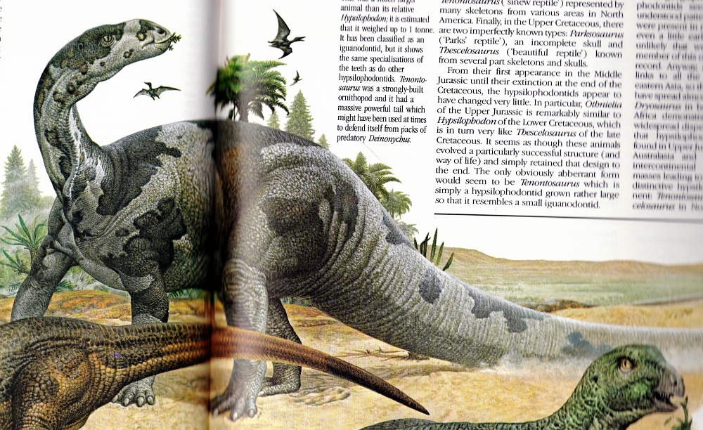 illustrated encyclopedia of dinosaurs pdf