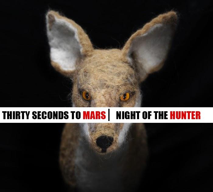 30 Seconds To Mars Night Of The Hunter Lyrics Lyrics Like