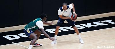 Previa Real Madrid - Gran Canaria : Vuelve el baloncesto