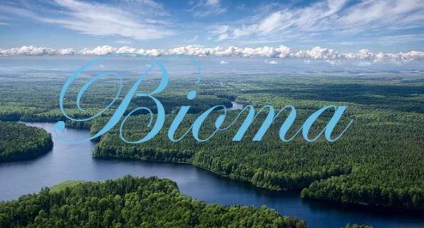 Pengertian Bioma, Ciri, Fungsi, Dan Jenis-Jenis Bioma Lengkap