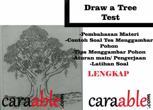 Tes Psikotes Menggambar Pohon Mangga Pohon Berkambium Draw A