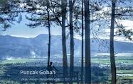 Puncak Gobah dan Rumah Pohon Aripan Solok