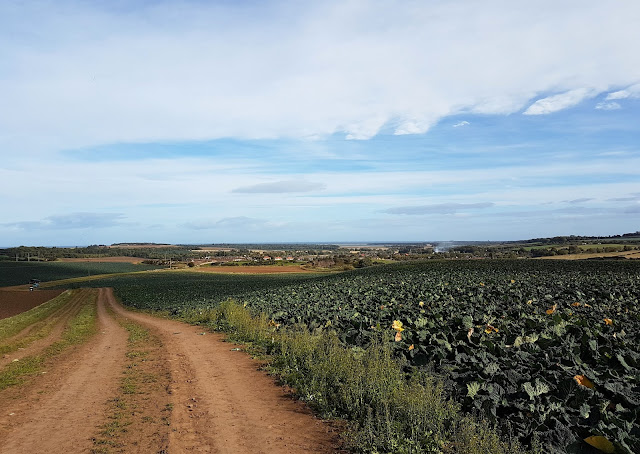 Looking back to East Linton and Dunbar beyond