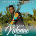 Audio | Mr Nana – Nilonae | Mp3 Download