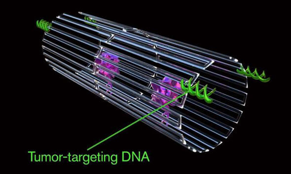 Scientists Created The First Nanorobots Programmed To Shrink Cancer Tumors