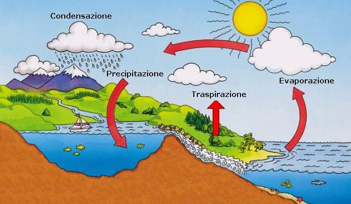 Stecca impara larte  ITALIANO PER STRANIERI settembre 2013