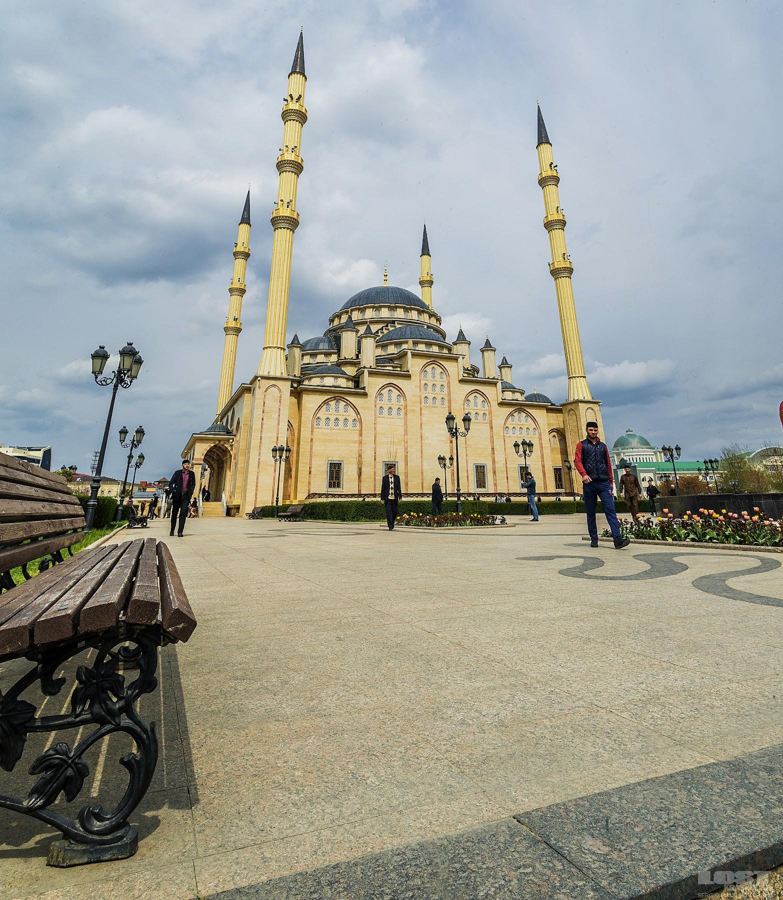 Lost In Krasnodar Chechen Heart